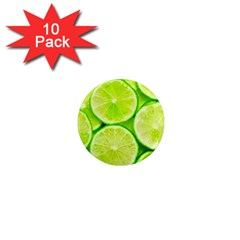 Limes 3 1  Mini Magnet (10 Pack)