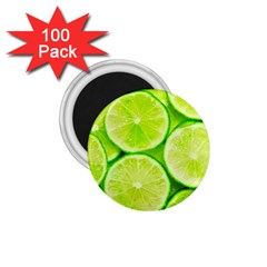 Limes 3 1 75  Magnets (100 Pack)