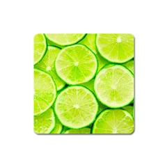 Limes 3 Square Magnet