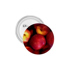 Nectarines 1 75  Buttons