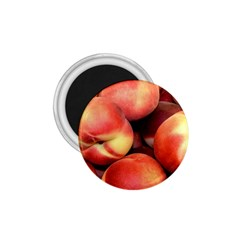 Peaches 1 1 75  Magnets