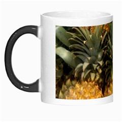Pineapple 1 Morph Mugs