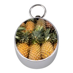 Pineapple 1 Mini Silver Compasses