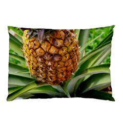 Pineapple 2 Pillow Case