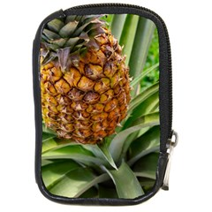 Pineapple 2 Compact Camera Cases