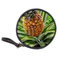 Pineapple 2 Classic 20 Cd Wallets