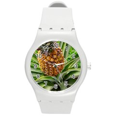 Pineapple 2 Round Plastic Sport Watch (m)
