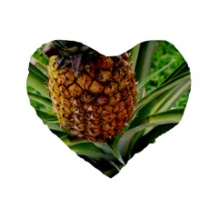 Pineapple 2 Standard 16  Premium Heart Shape Cushions