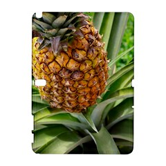 Pineapple 2 Galaxy Note 1