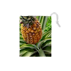 Pineapple 2 Drawstring Pouches (small)