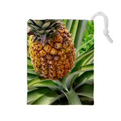 Pineapple 2 Drawstring Pouches (large)