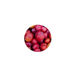 Plums 1 1  Mini Magnets