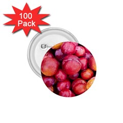 Plums 1 1 75  Buttons (100 Pack)