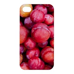 Plums 1 Apple Iphone 4/4s Hardshell Case