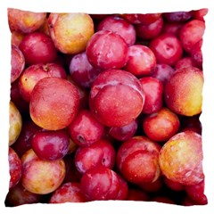 Plums 1 Standard Flano Cushion Case (one Side)