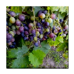 Grapes 2 Tile Coasters