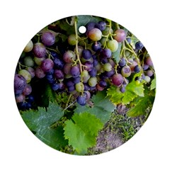 Grapes 2 Round Ornament (two Sides)