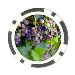 Grapes 2 Poker Chip Card Guard (10 Pack)