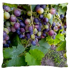 Grapes 2 Large Cushion Case (two Sides)