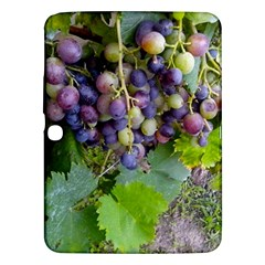 Grapes 2 Samsung Galaxy Tab 3 (10 1 ) P5200 Hardshell Case
