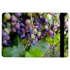 Grapes 2 Ipad Air 2 Flip