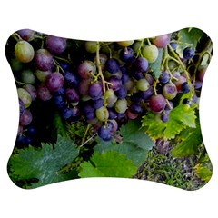 Grapes 2 Jigsaw Puzzle Photo Stand (bow)