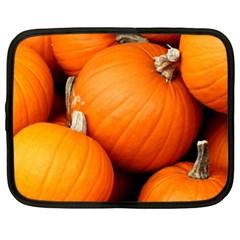 Pumpkins 1 Netbook Case (xl)