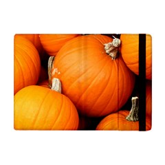 Pumpkins 1 Apple Ipad Mini Flip Case