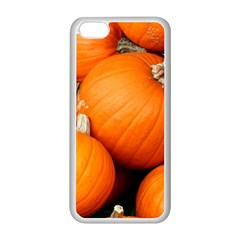 Pumpkins 1 Apple Iphone 5c Seamless Case (white)