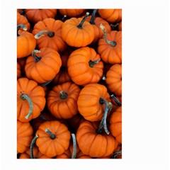 Pumpkins 2 Large Garden Flag (two Sides)