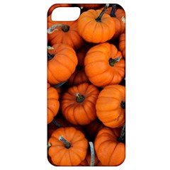 Pumpkins 2 Apple Iphone 5 Classic Hardshell Case