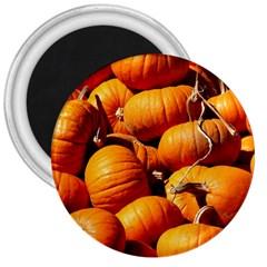 Pumpkins 3 3  Magnets