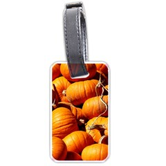 Pumpkins 3 Luggage Tags (one Side)