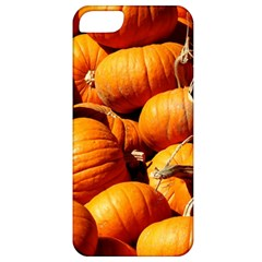 Pumpkins 3 Apple Iphone 5 Classic Hardshell Case