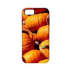 Pumpkins 3 Apple Iphone 5 Classic Hardshell Case (pc+silicone)