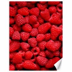 Raspberries 2 Canvas 18  X 24