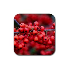 Red Berries 1 Rubber Coaster (square)