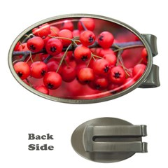Red Berries 1 Money Clips (oval)