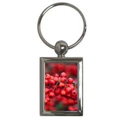 Red Berries 1 Key Chains (rectangle)