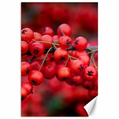Red Berries 1 Canvas 24  X 36