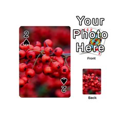 Red Berries 1 Playing Cards 54 (mini)