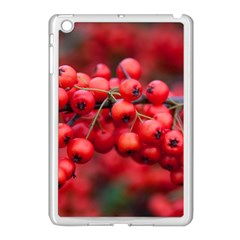 Red Berries 1 Apple Ipad Mini Case (white)