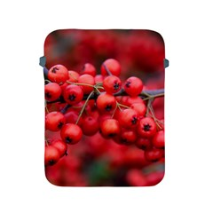 Red Berries 1 Apple Ipad 2/3/4 Protective Soft Cases