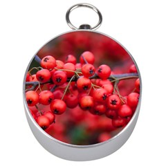 Red Berries 1 Silver Compasses