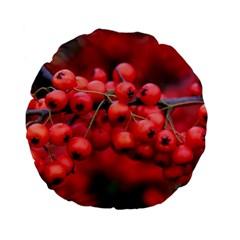 Red Berries 1 Standard 15  Premium Flano Round Cushions