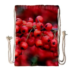 Red Berries 1 Drawstring Bag (large)