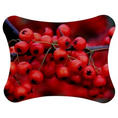 Red Berries 1 Jigsaw Puzzle Photo Stand (bow)