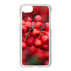 Red Berries 1 Apple Iphone 7 Seamless Case (white)