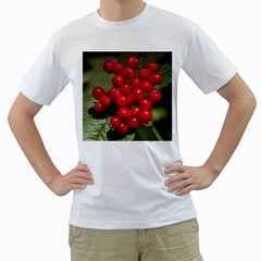 Red Berries 2 Men s T Shirt (white) (two Sided)