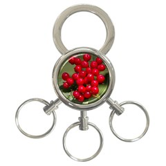 Red Berries 2 3 Ring Key Chains